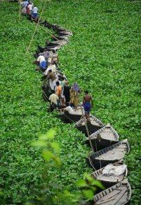 Caminhos se constroem quando a necessidade surge e os esforços se unem!